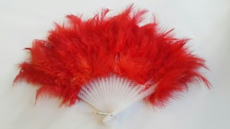 Fan Feather