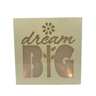 Dream Big Light Box