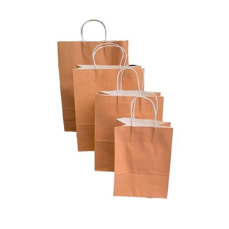Paper Bag(small) (Pack of 12)